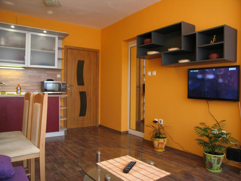 Living room - kitchenette - Hotel apartment 'MLADOST' - 145 in Sofia, Bulgaria - Sofia - rentals