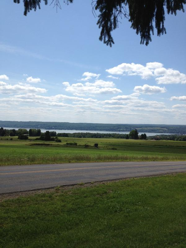 View from the from yard - Chautauqua Lake Amazing Views - Bemus Point - rentals