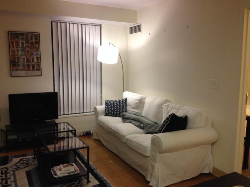 Gorgeous Harvard Apt on River - Image 1 - Boston - rentals