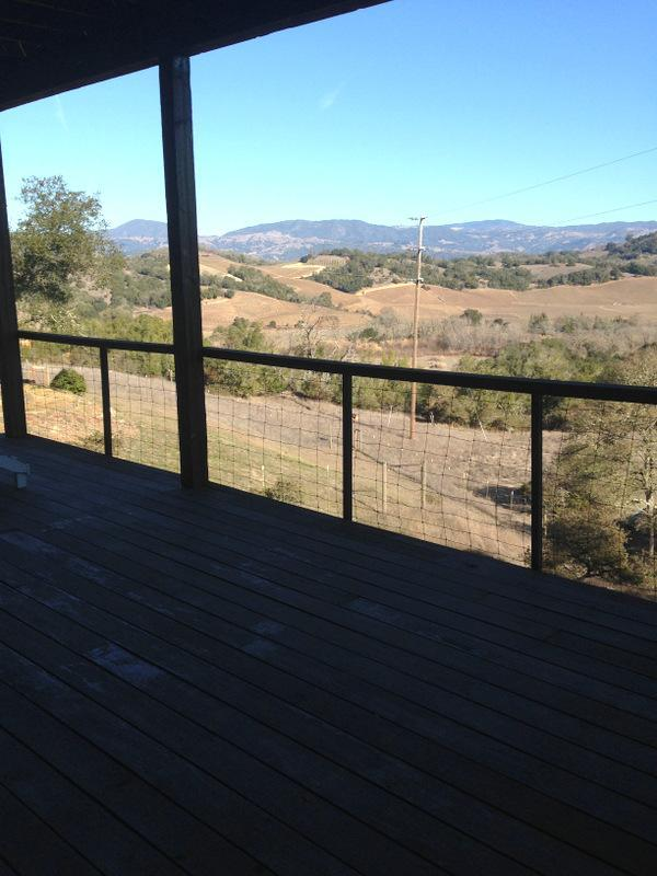 Private entrance - Peaceful Vineyard views - Healdsburg - rentals