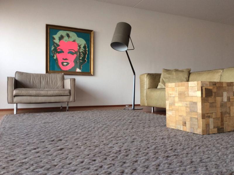 Massive Living room overlooking harbour - Design Penthouse Panoramic Views Amsterdam Center! - Amsterdam - rentals