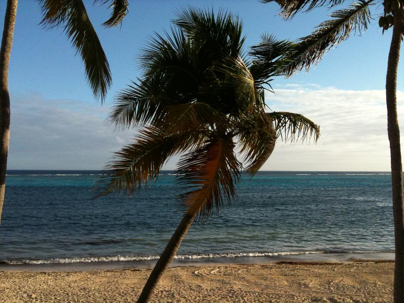 our patio view - Sugar Beach..Says It All.. (NO PASSPORT REQ'D) - Christiansted - rentals