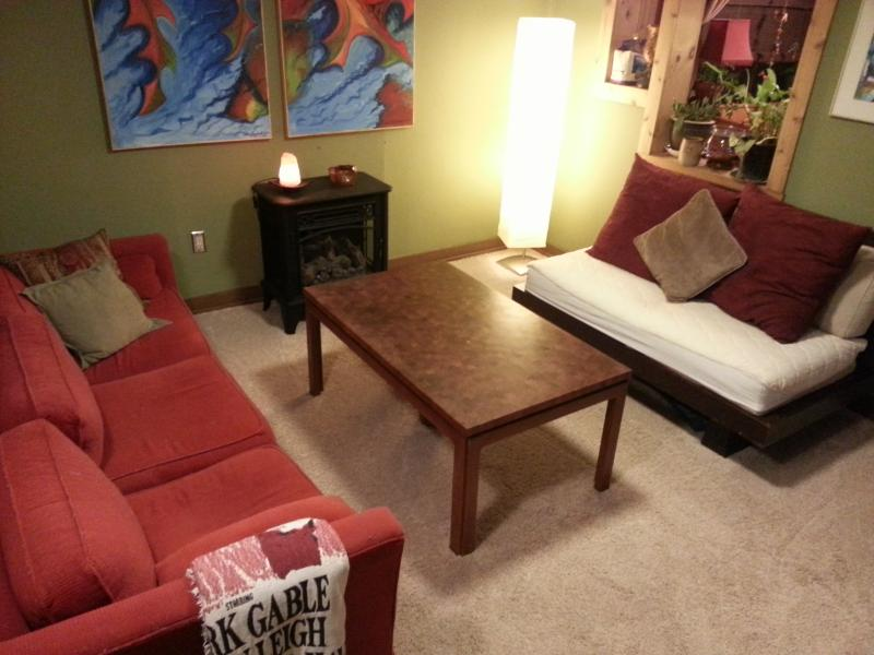 Living room - Rustic cabin - near downtown Asheville - Asheville - rentals