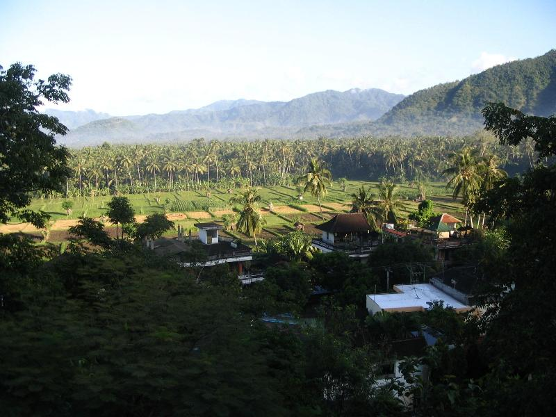 View from the front deck - Experience the REAL Bali - Candidasa - rentals
