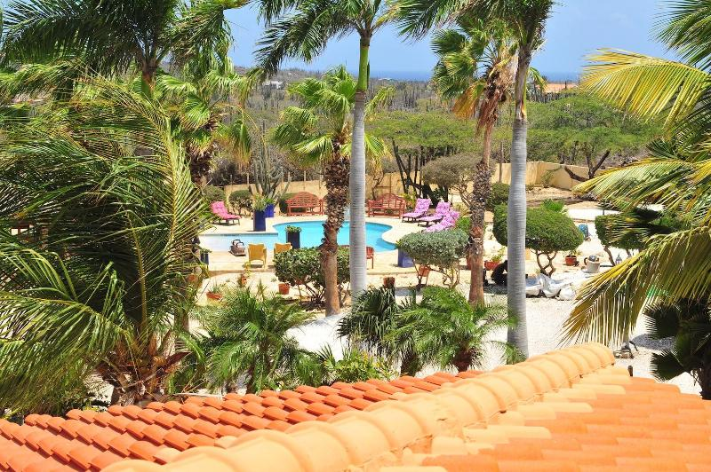 view of garden and pool - Paradise Apartment. in one of the best location in aruba, five minutes from eagle beach - Oranjestad - rentals