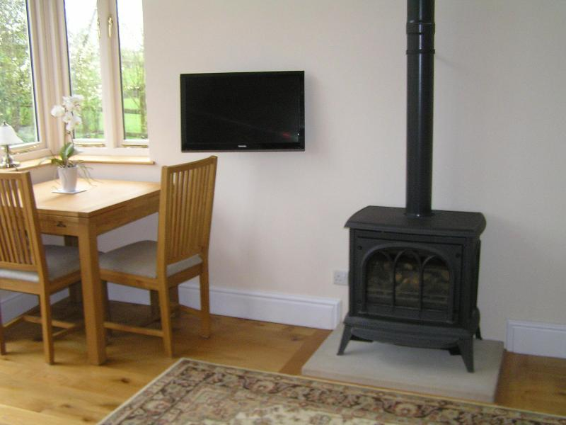 Wood burner effect gas fire - Swallows Nest self-catering holiday cottage - Matlock - rentals