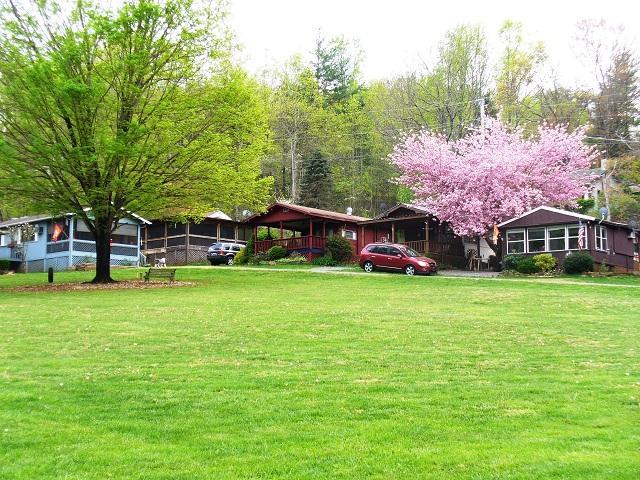 Lush grounds - Smoky Mountain Retreat in the Heart of NC - Sylva - rentals