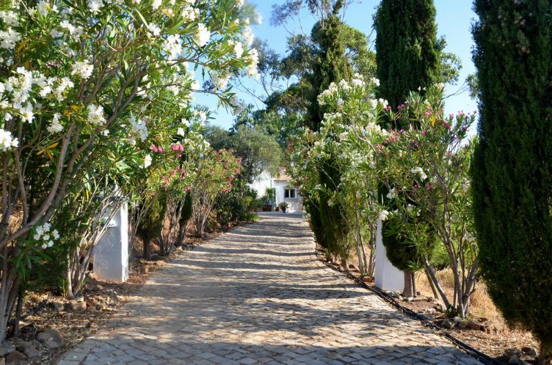 entrance - Beautiful mountain view 2 BR apart! - Tavira - rentals