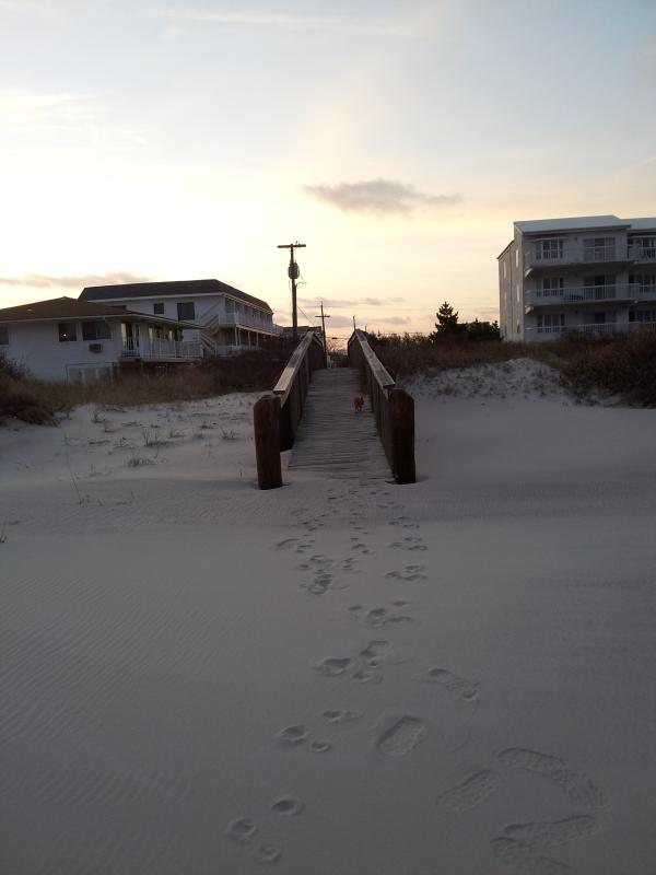 CONDO ONLY STEPS FROM THE BEACH - RIGHT ON THE BEACH & STEPS TO THE OCEAN - Brigantine - rentals