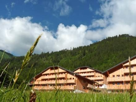 Le Grand Lodge ~ RA28072 - Image 1 - Chatel - rentals