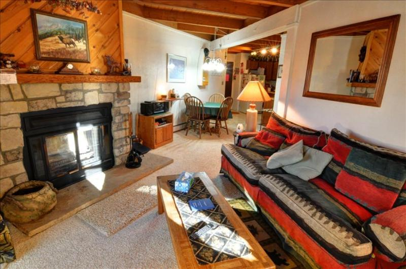 TREEHOUSE I-208: Cozy 1 Bed/1 Bath Condo with King Bed, 7 Ski Areas and a Great Clubhouse! - Image 1 - Silverthorne - rentals