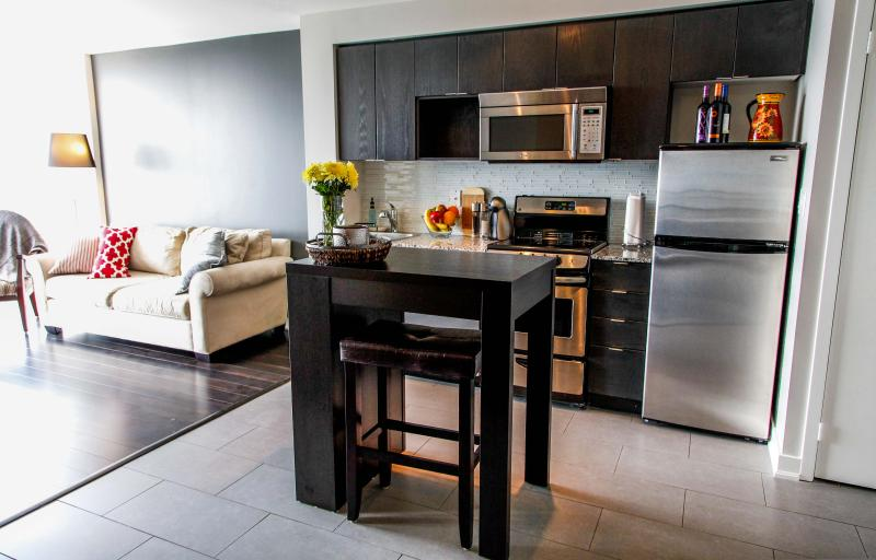 Stylish furnishings and stainless steel appliances - Stylish 1 Bedroom + Den in downtown Toronto with gorgeous view of the lake! - Toronto - rentals