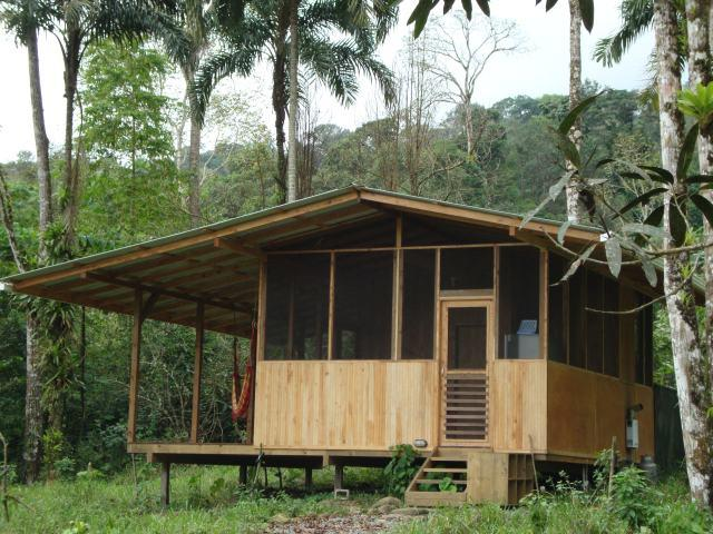 The Cabina is made of local wood and surrounded by cedar trees. This is the view from the front. - Howler Monkey Cabin next to the Jungle! - Dominical - rentals