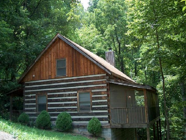 Nature's Retreat - Image 1 - Pigeon Forge - rentals