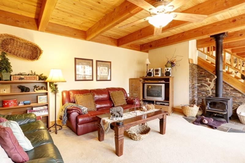 Truckee Tree House- Living Area - Truckee Tree House - Truckee - rentals