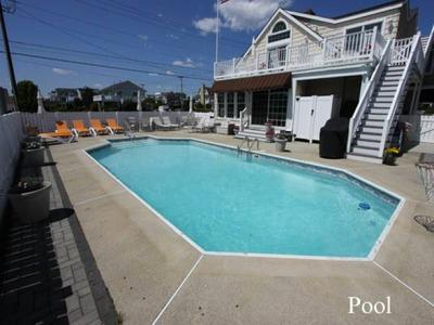 Pool - Beach Block,3rd House From Beach,Large Pool,Views - Avalon - rentals