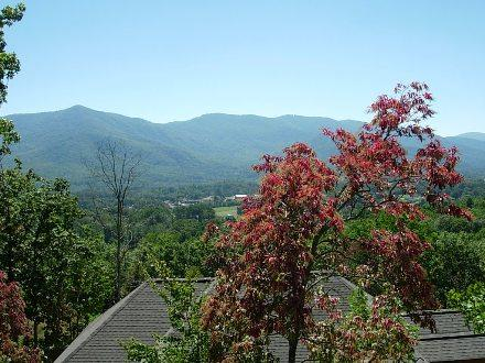Shadowridge - Black Mountain Vacation Rentals - Image 1 - Black Mountain - rentals