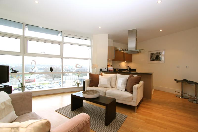 Riverside glamour - Battersea Reach, (IVY LETTINGS). Fully managed, free wi-fi, discounts available - London - rentals