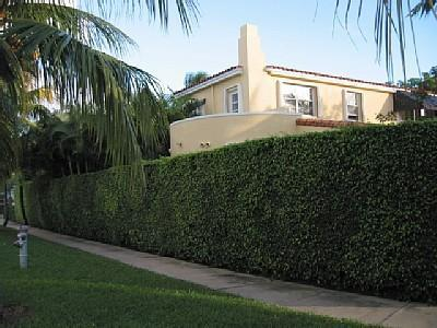 Front of Home - Secluded South Beach Pool Home - Miami Beach - rentals