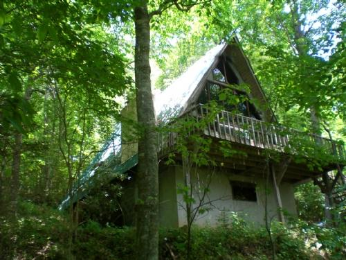 El Oso in Summer Time - El Oso - Asheville - rentals
