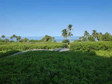 View - Westshore at Naples Cay 203 - Naples - rentals