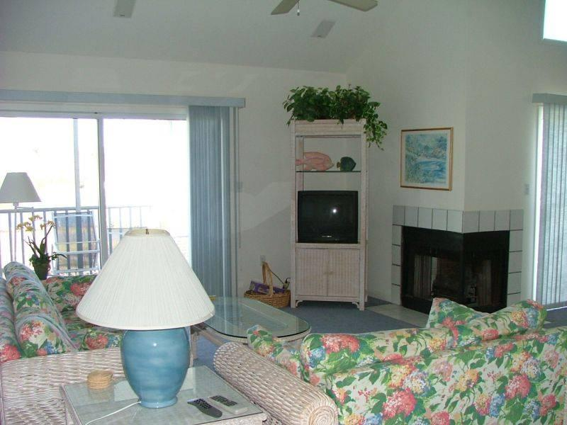 20003 Twin Lakes Court - Image 1 - Bethany Beach - rentals