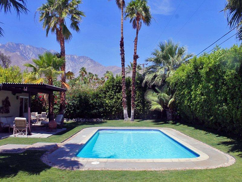 Private Backyard and Pool  - H-A Stylish Mid Century Modern - Palm Springs - rentals
