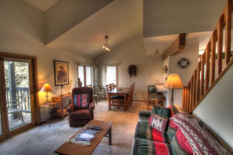 206 Pines - Mountain Area - Image 1 - Steamboat Springs - rentals