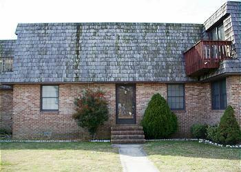 Blue Diamond - Image 1 - Chincoteague Island - rentals