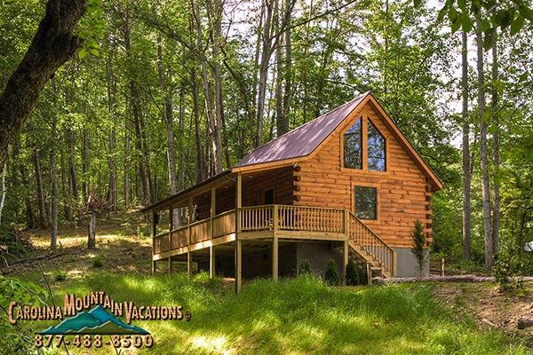 Trot-in Log Cabin - Image 1 - Bryson City - rentals