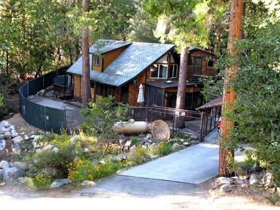 Hillsdale Retreat - Hillsdale Retreat - Idyllwild - rentals