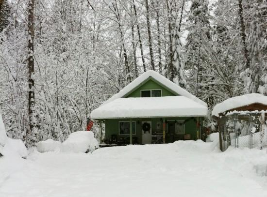 Mt. Baker Rim Cabin #71 - The House on a Knoll - Image 1 - Maple Falls - rentals