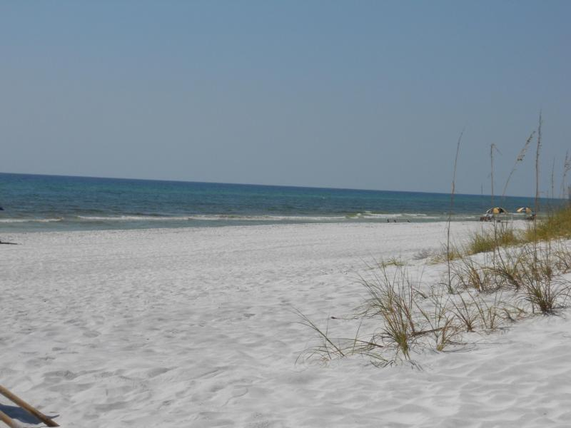 This is our beach and views - Views Views In Front of Beach See Dolphins&Sunsets - Santa Rosa Beach - rentals