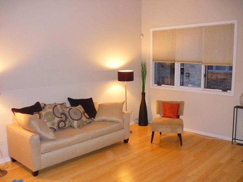 Main living area - 4 Bedroom Townhouse in Chinatown Close to Downtown - Chicago - rentals