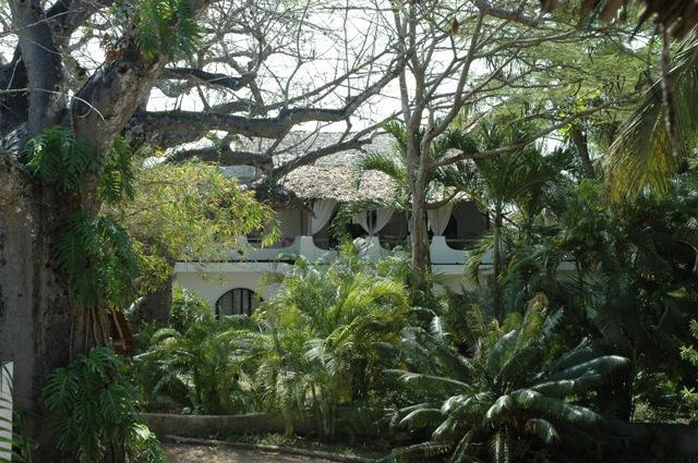 Outside 1 - Smart 3 bedrooms villa on Kenya Coast - Diani - rentals