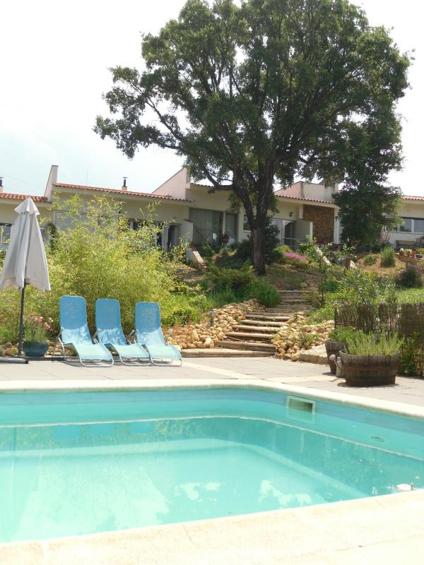 Swimmingpool, garden and houses - Luxury bungalows in the green heart of Portugal - Arganil - rentals