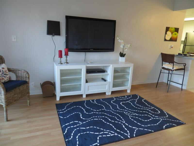 50 inch TV - Clearwater Beach on the Beach ( 3) Month Minimum - Clearwater Beach - rentals