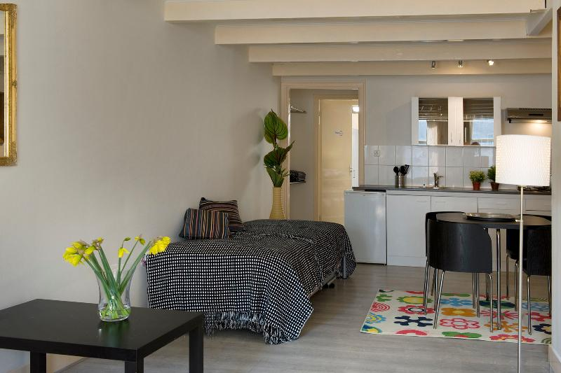 Central and Stylish - Image 1 - Amsterdam - rentals