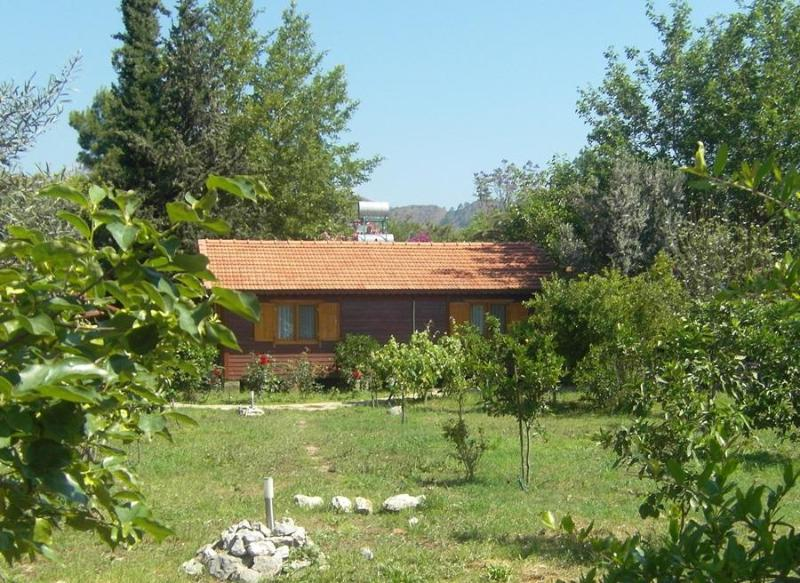 Holiday house Dilek - Holiday house Dilek in a orange garden near beach - Cirali - rentals