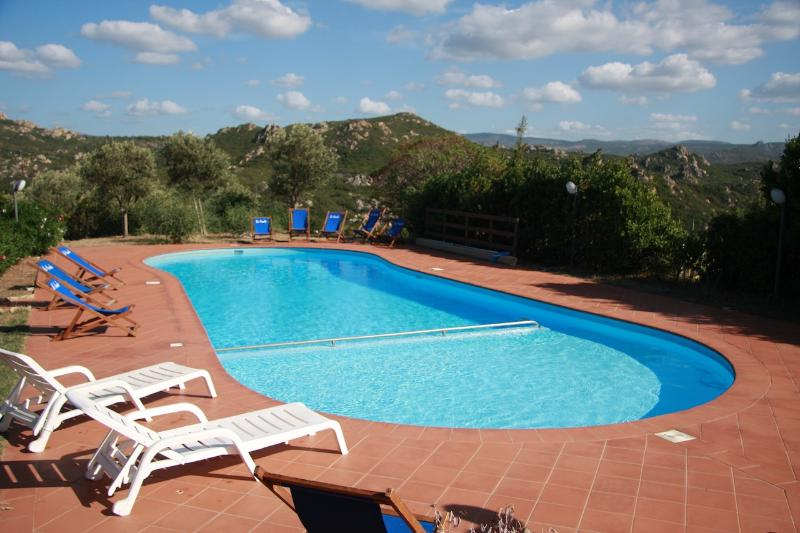 Villa Ginepro with pool and barbecue - Image 1 - Costa Paradiso - rentals