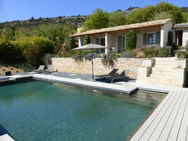 Our two gites overlook the pool - One bedroom cottage with pool & views of  Luberon - Luberon - rentals