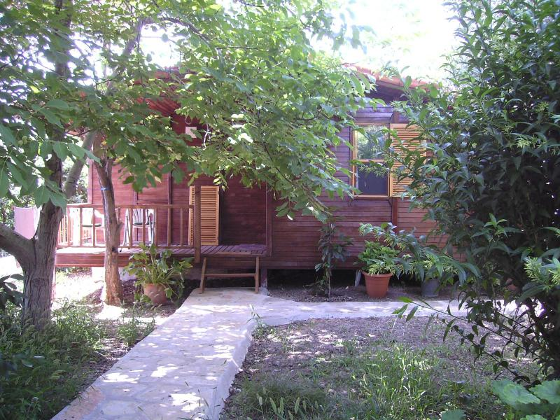 House Arzu - Holiday home Arzu - Cirali - rentals