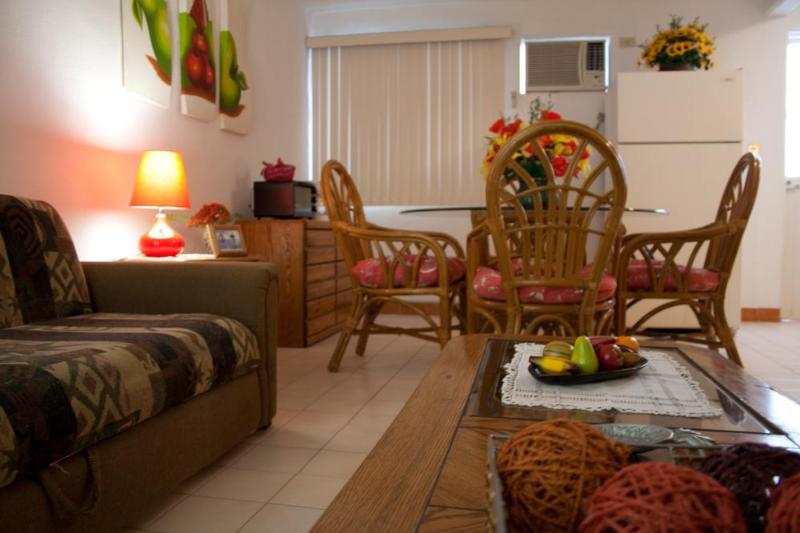 Sofá cama, aire acondicionado - II GOOD LOCATION , NICE, CLEAN AND COMFORTABLE. - La Paz - rentals