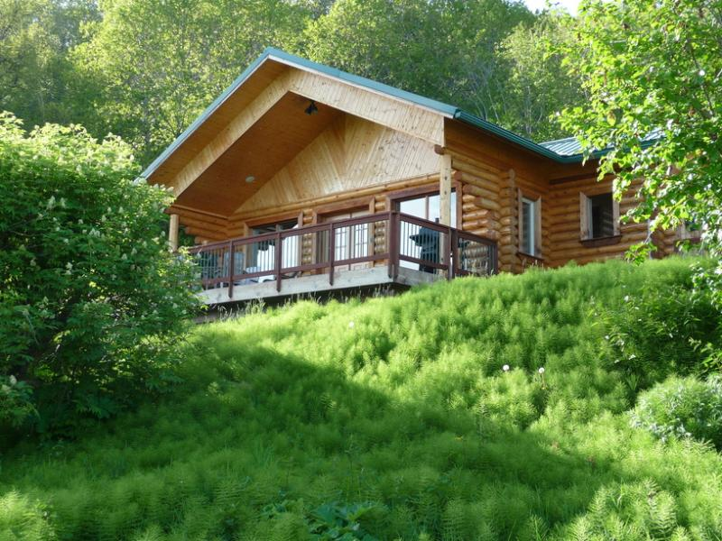Twin Puffins Cabin - Twin Puffins: 2 BDRM Secluded Cabin w/Great Views - Homer - rentals