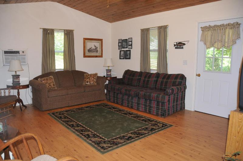 Living room with queen sleeper sofa. - Lil' River Cabin - Galena - rentals