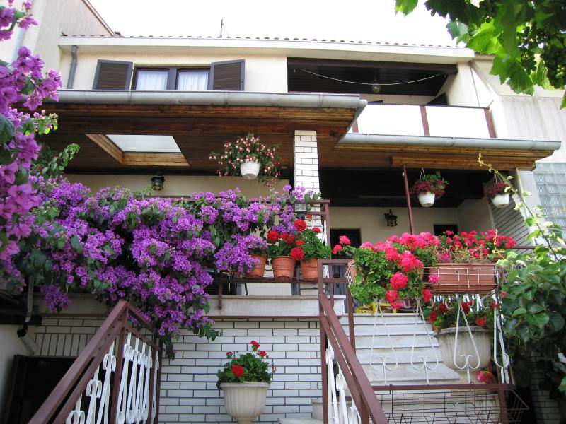 House - Apartment Tara - Pula - rentals