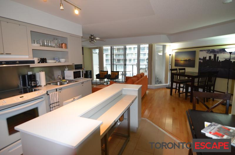 Spacious open concept layout  - Sapphire Suite - 2 bdr+1bath - heart of Toronto - Toronto - rentals