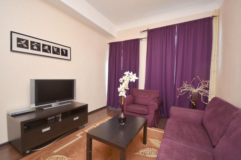 Family Room, free WiFi, Cable TV - Deluxe 2-bedroom 1 block to Red Square-Kremlin! - Moscow - rentals