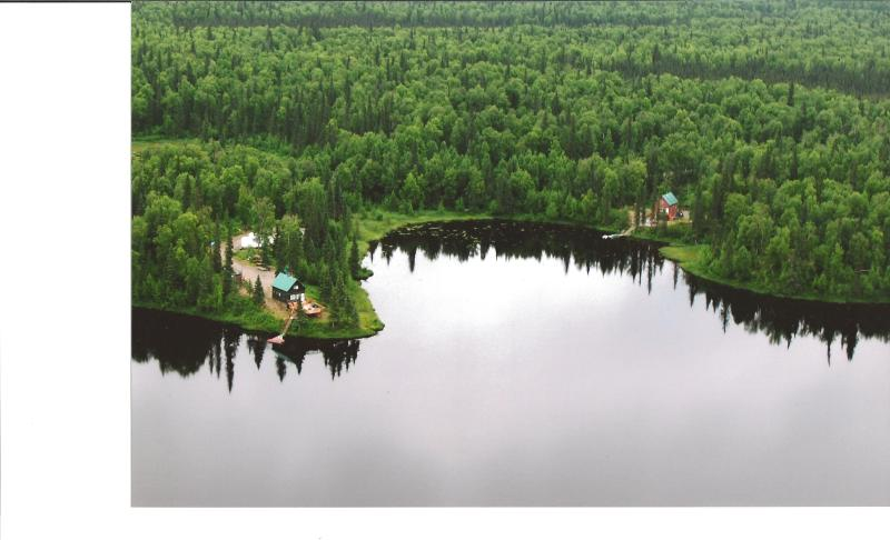 Ariel View of the Cabins - Amber Cove - Trapper Creek - rentals
