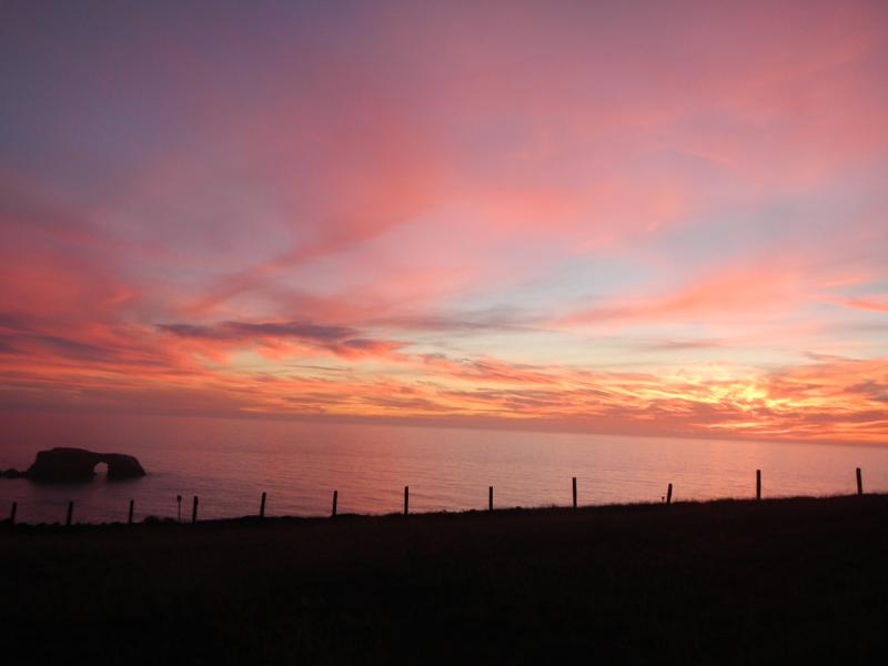 Sunset in November, taken from front yard of property - Oceanfront Gem, Sonoma Coast, Goat Rock, Panoramic - Bodega Bay - rentals